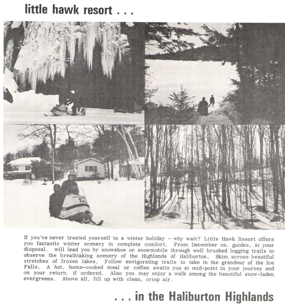 brochure panels